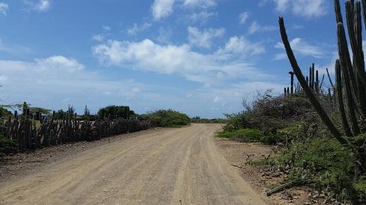 Backroads Bon S